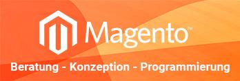 Magento Programmierung, Beispiele und Infos